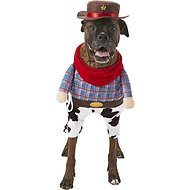 Frisco Front Walking Cowboy Dog & Cat Costume