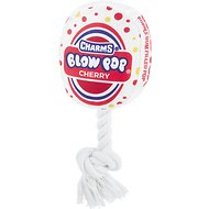 OurPets Blow Pop Plush Dog Toy