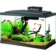 Aqueon LED Fish Aquarium Starter Kit, 10 gallon