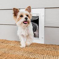 PetSafe White Wall Entry Plastic Pet Door, Small