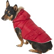 Frisco Portland Insulated Dog & Cat Parka