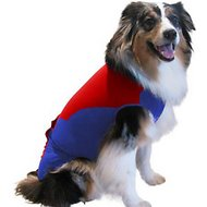 Surgi ~ Snuggly Wonder Suit Post Surgical Healing Dog Suit, X-Large Long