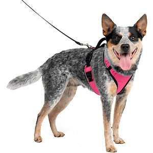 PetSafe EasySport Nylon Reflective Back Clip Dog Harness, Pink, Medium: 26 to 32-in chest; Comfort is important for dogs when out for a walk and PetSafe EasySport Harness will keep your pup feeling secure. This harness is padded for a comfortable fit and the elasticized neckline will conform to your furry friend. It also features two snap buckles which makes this harness easy to get on and off. For pet parents, the top handle allows for easy control in case you need to grab your paw-tner quickly. Fully adjustable and made of nylon, PetSafe EasySport Harness is a cozy yet sturdy way to take your dog out and about.