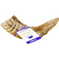 Icelandic+ Lamb Horn with Marrow Dog Chew, 4-in