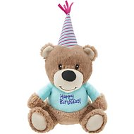 Frisco Plush Birthday Bear with Striped Hat Dog Toy