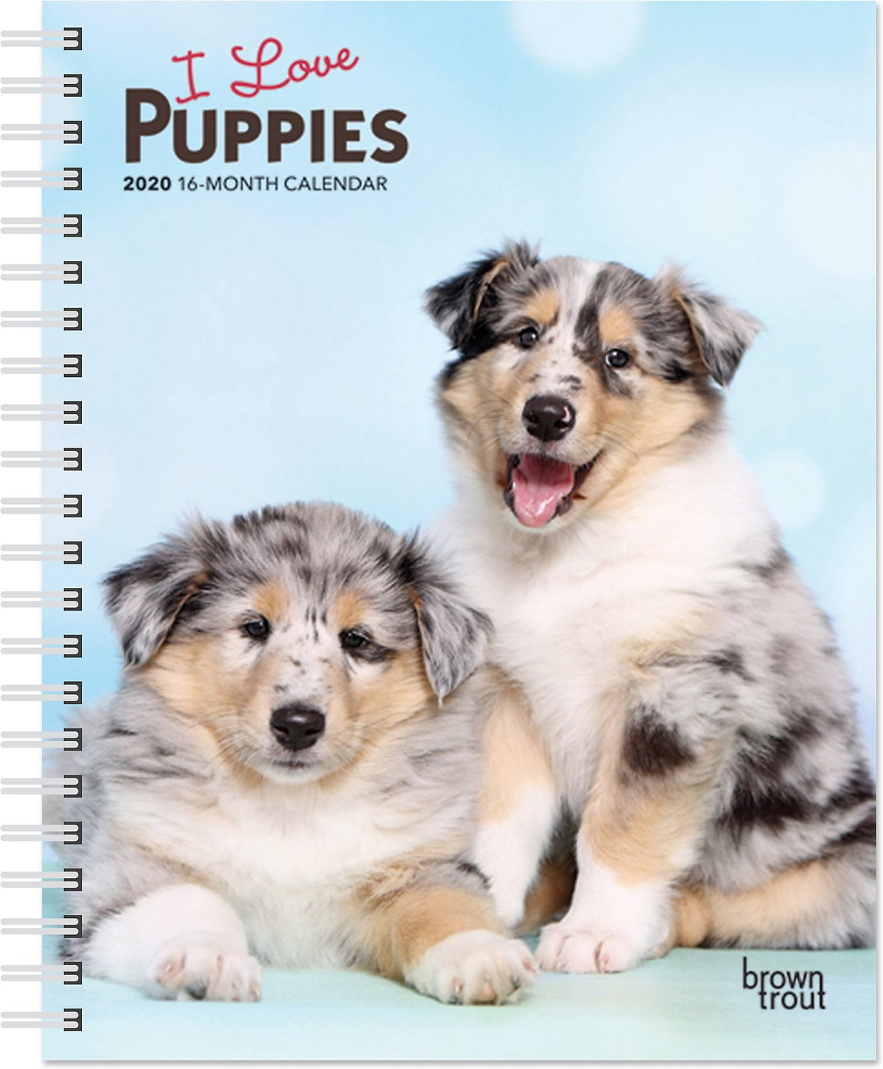 Calendrier Om 2020 16.I Love Puppies 2020 16 Month Weekly Calendar Chewy Com