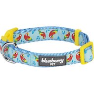 Blueberry Pet Funny Parrot Print Dog Collar, Medium