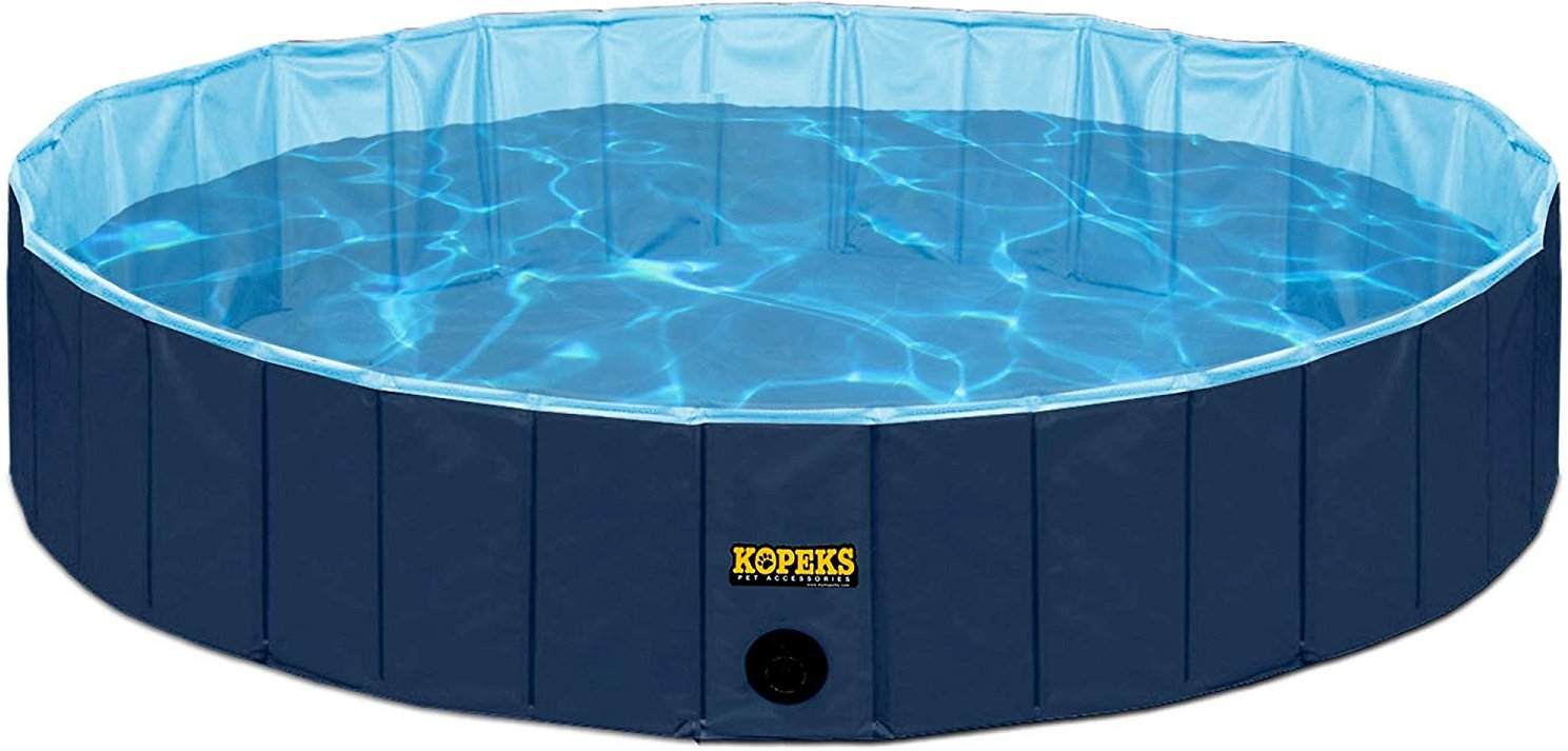 Indoor and Outdoor Dog Swimming Pool in Reisterstown MD ...