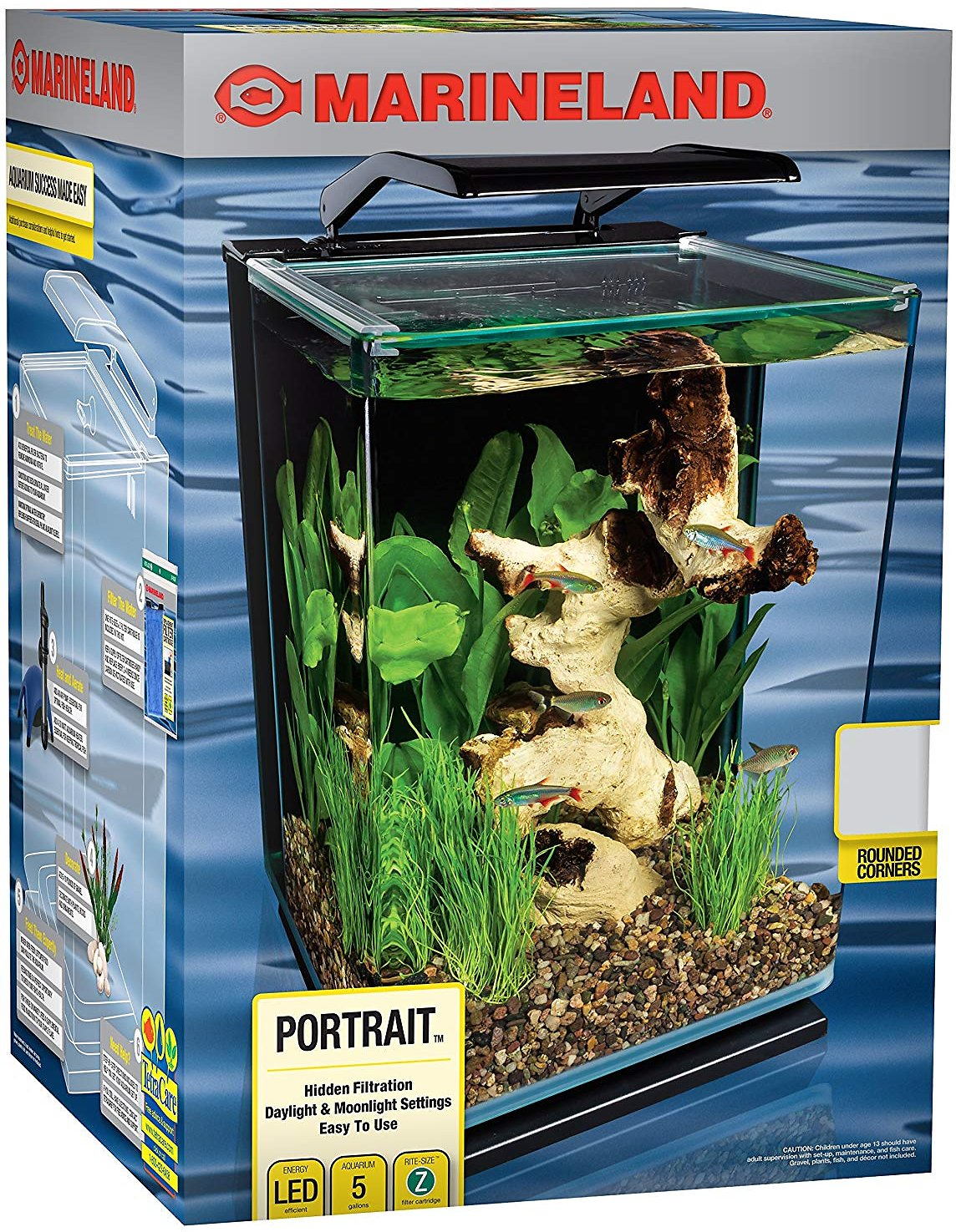 Best 5 Gallon Fish Tank: Ultimate Guide 1