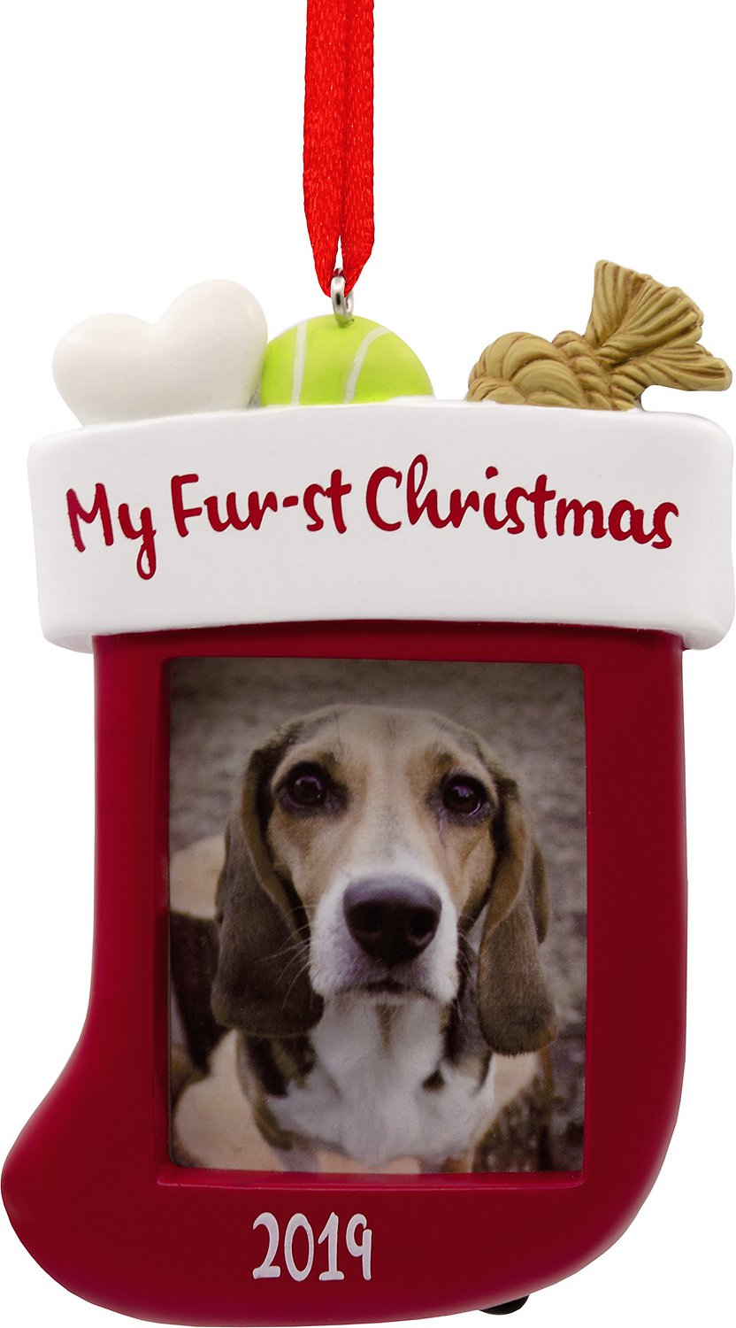 Dogs First Christmas Ornament.Hallmark My Furst Christmas Dog Stocking Picture Frame