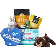 Goody Box Puppy, Training Treats, Cuddly Toys & Potty Gear for Puppies of All Sizes