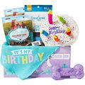 Goody Box Birthday Toys, Treats & Apparel for Small/Medium Dogs