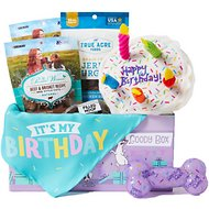 Goody Box Birthday Toys & Treats for Small and Medium Dogs