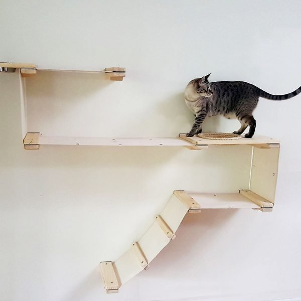 CatastrophiCreations Cat Mod Play Wall