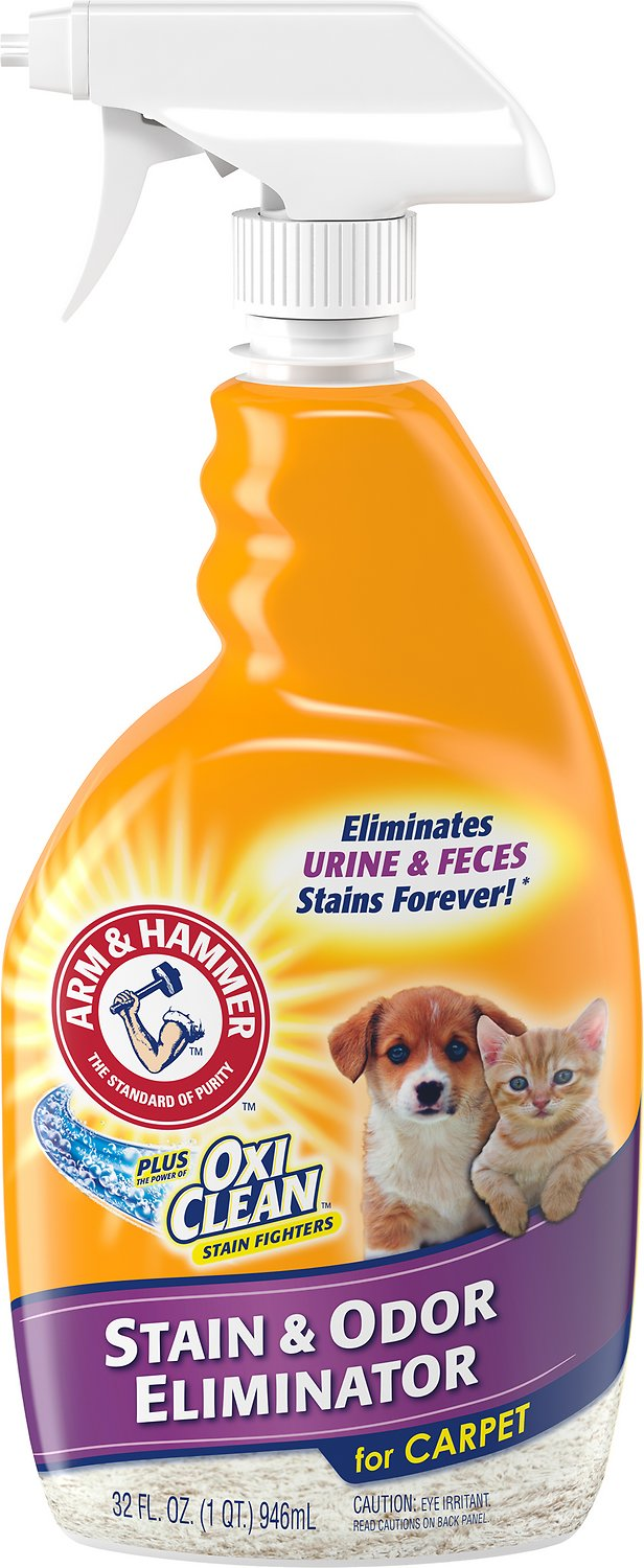 Arm & Hammer Plus Oxiclean Pet Stain
