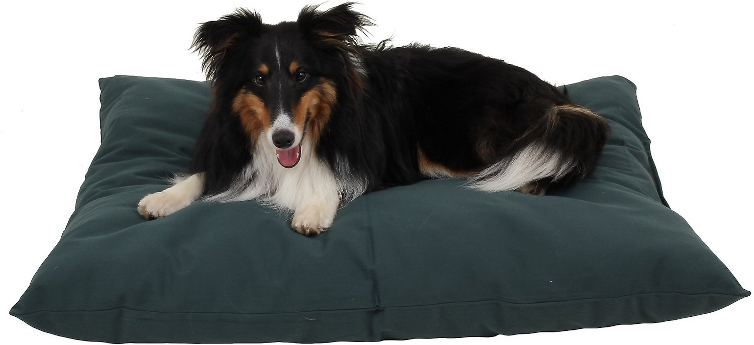 Carolina Pet Solid Shebang Indoor Outdoor Pillow Dog Bed Green Small Chewy Com