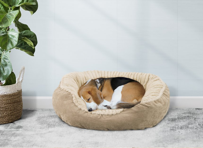 Ethical Pet Sleep Zone Carved Plush Bolster Cat Dog Bed Tan 21 In Chewy Com