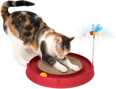Best Top Cat Toy Eletronic Brands And Get Free Shipping A782