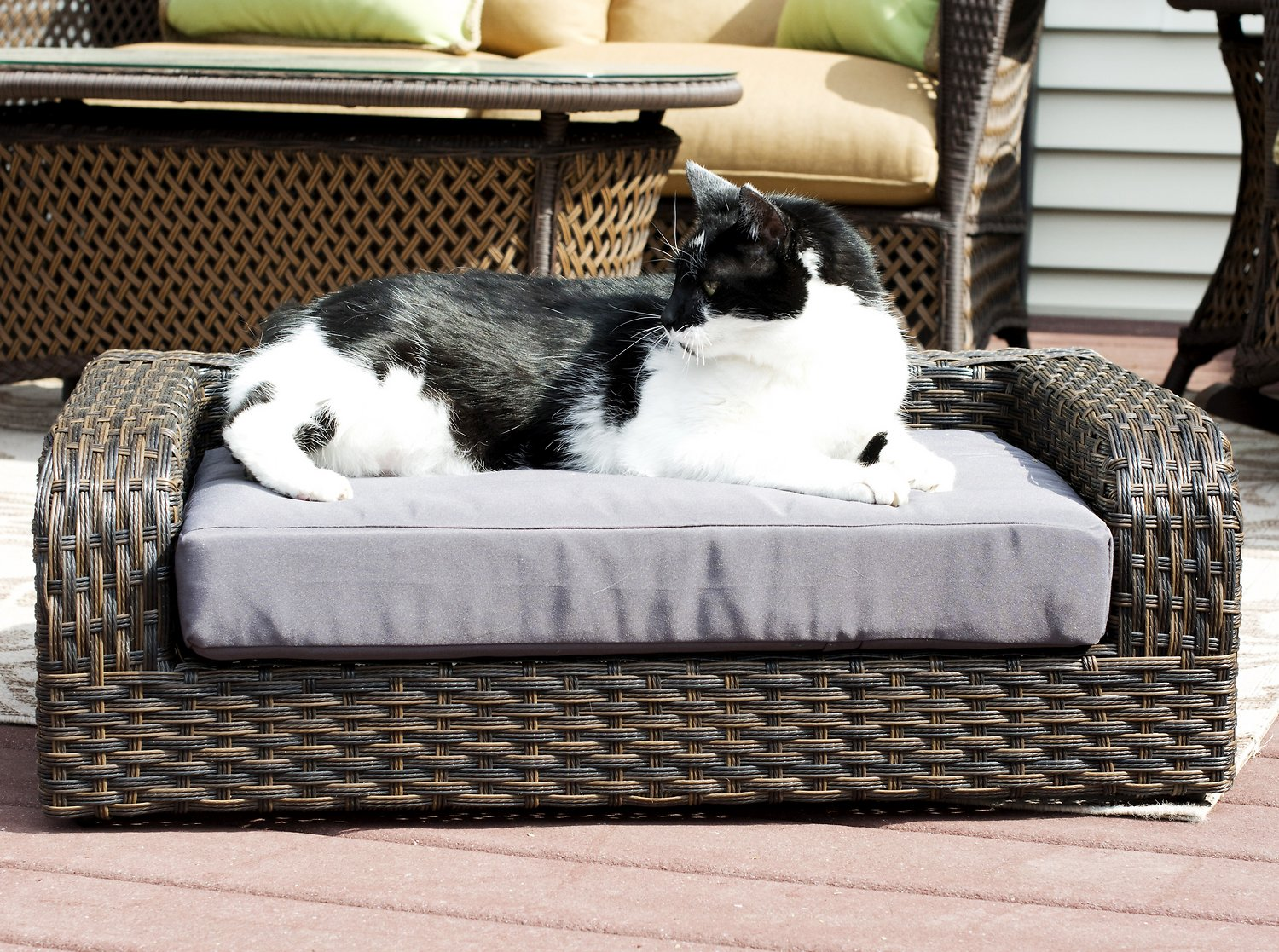 How to select the Right Wicker Pet Bed