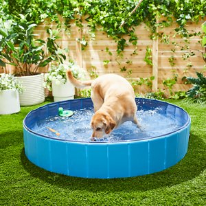 Frisco Outdoor Dog Swimming Pool, Blue, XX-Large