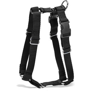 PetSafe Sure-Fit Adjustable Back Clip Dog Harness, Black, Medium: 22 to 30-in chest; **Remember to measure your pet for the paw-fect fit** Help control your canine companion during walks while keeping him comfortable with PetSafe\\\'s Sure-Fit Adjustable Back Clip Dog Harness! This piece adjusts at five different points, so you can find a comfortable fit for your furry friend. It also has two quick-snap buckles, allowing you to put the harness on and take it off without the hassle! A harness is a great way to help distribute pressure more evenly, reducing stress on your pup's throat. Petsafe Surefit Dog Harness is available in multiple sizes and two colors.