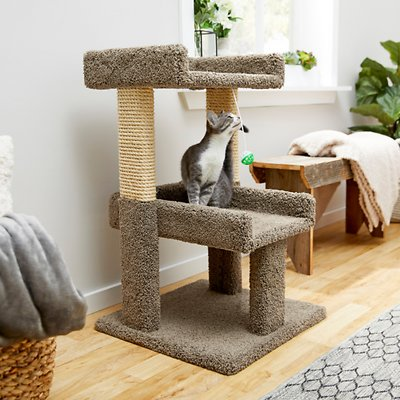 Frisco 32 In Real Carpet Wooden Cat Tree With Toy Beige Chewy Com