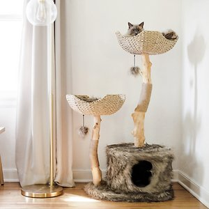 Mau Lifestyle Cento 46-in Modern Wooden Cat Tree & Condo, Brown