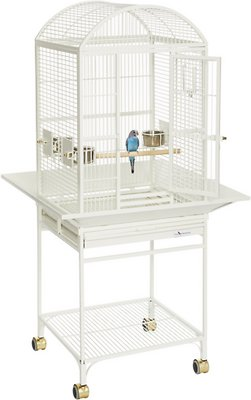 Midwest Avian Adventures Nina Dometop Bird Cage White Chewy Com