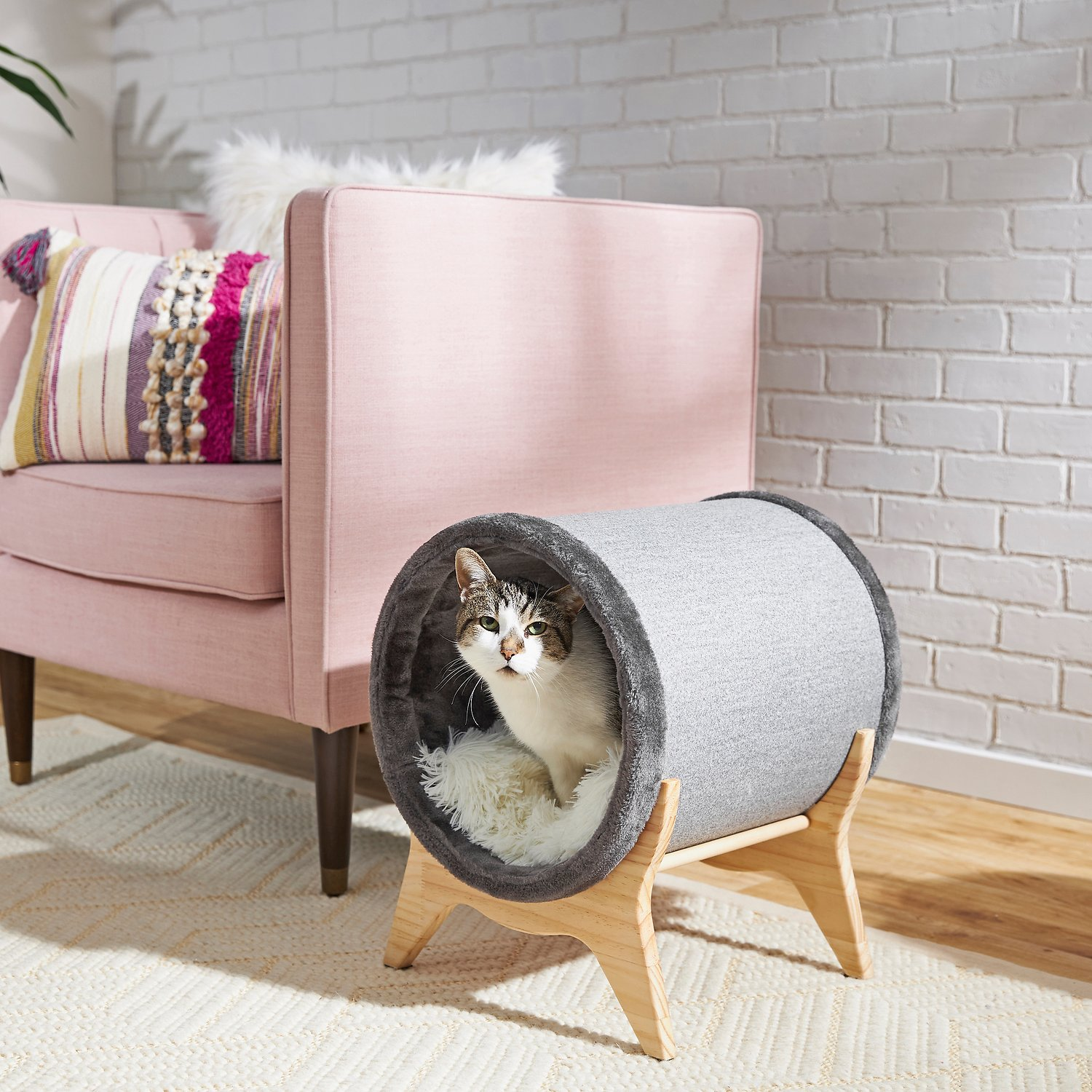 Frisco Modern Tunnel Elevated Cat Bed Chewy Com