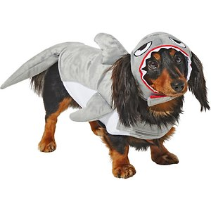 Frisco Shark Attack Dog & Cat Costume, XX-Large; Duh-nuh. Duh-nuh. No, it's not that shark. It's your dog in their cute new costume! This two-piece costume is easy to put on thanks to the fuzzy fastener straps on the neck and belly and is comfy to wear since it's made with soft polyester. It's great for themed parties, Halloween or photo shoots, and comes in various sizes so you can choose the right fit for your pal. Plus, it features a built-in leash hole so you can always be ready to go.
