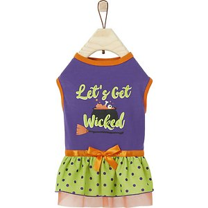 Frisco Let's Get Wicked Dog & Cat Dress