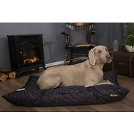 Scruffs Expedition Memory Foam Pillow Dog Bed