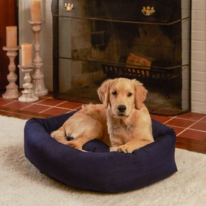 Happy Hounds Molly Rectangle Indoor & Outdoor Bumper Dog Bed