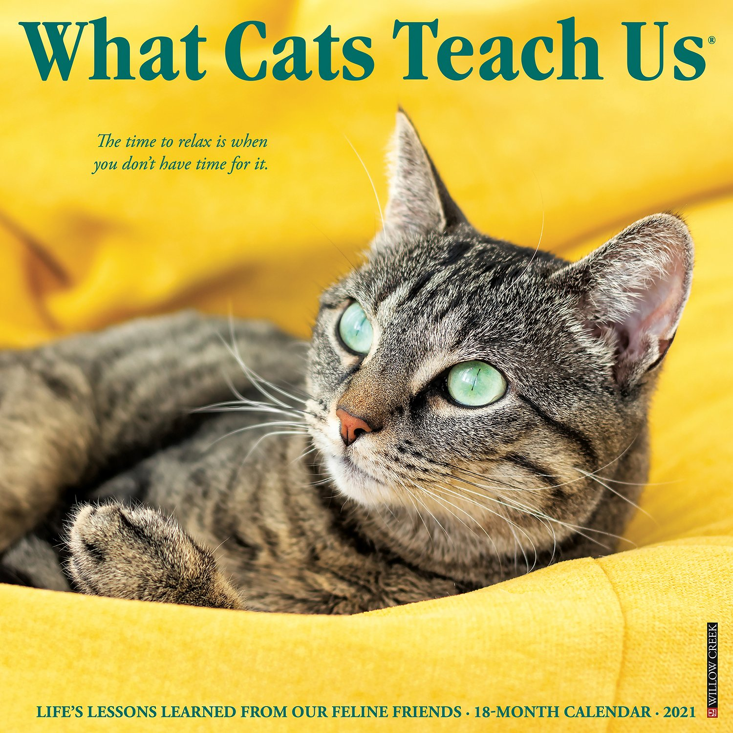 What Cats Teach Us 2021 Wall Calendar - Chewy.com
