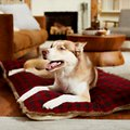 Frisco Buffalo Check  Dog & Cat Lounger