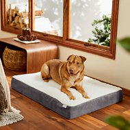 Frisco Orthopedic Pillow Cat & Dog Bed
