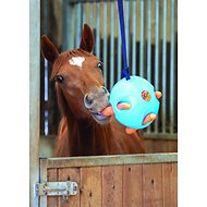 Shires Equestrian Products Carrot Ball Horse Toy, Blue