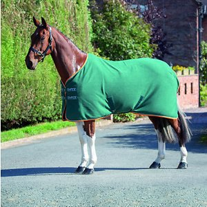 Shires Equestrian Products Tempest Original Fleece Horse Rug, Green, 66-in