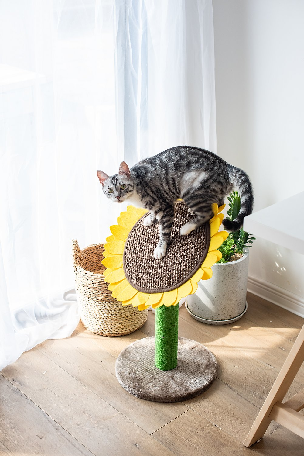 GiftParty Cat Scratching Post 18x12 Inch Sunflower Durable Natural Sisal Cute Board Scratcher Cat Furniture Interactive Activity Pad Toy for Kitten