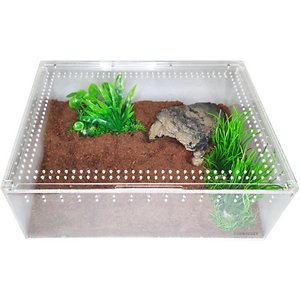 HerpCult Acrylic Insect & Reptile Terrarium, Clear Top, X-Large