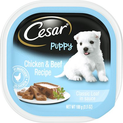 Cesar Puppy With Chicken Amp Beef Dog Food Trays 3 5 Oz