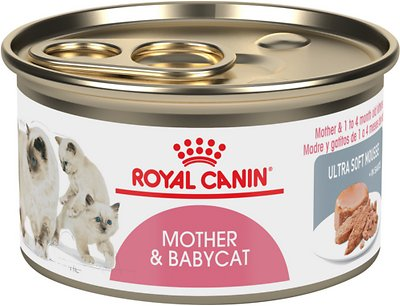9. Royal Canin Mother & Babycat Wet Cat Food