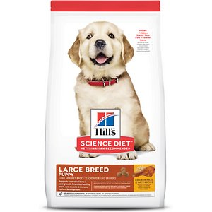 Hill's Science Diet Puppy Large Breed Chicken Meal & Oat Recipe Dry Dog Food
