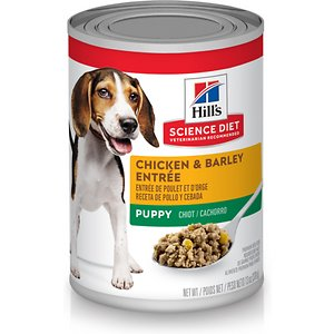 Hill's Science Diet Puppy Chicken & Barley Entree Canned Dog Food, 13-oz, case of 12