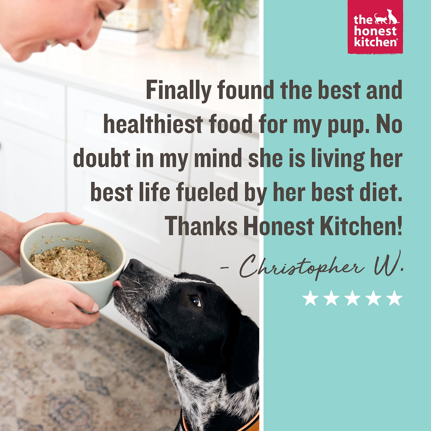 The honest kitchen grain free turkey recipe dehydrated dog food video nvjuhfo Images
