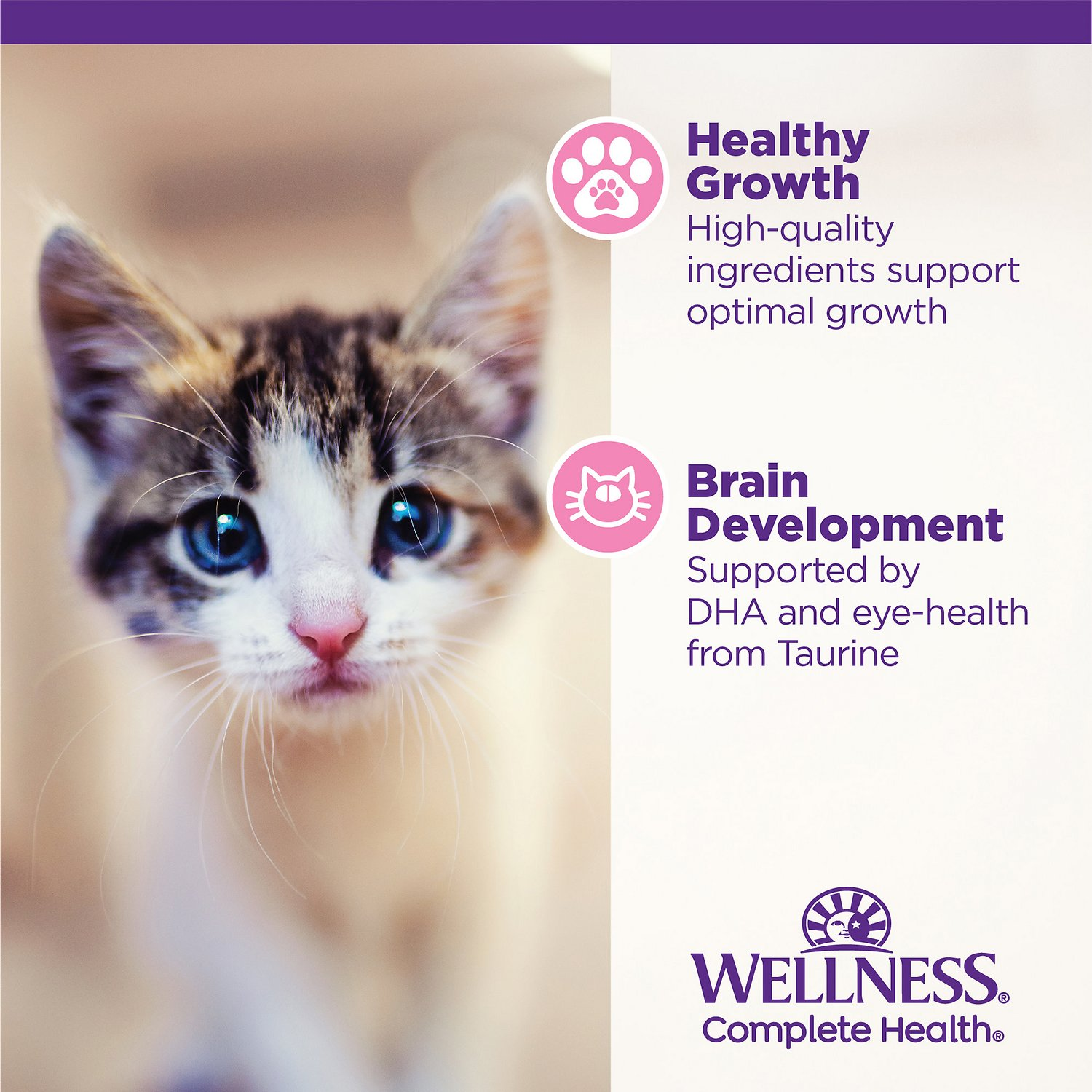 Wellness Complete Health Kitten Formula Grain Free Canned