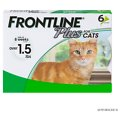 Frontline Plus Flea & Tick Cat & Kitten Treatment