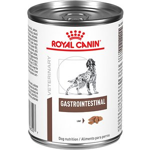 Royal Canin Veterinary Diet Gastrointestinal Canned Dog Food, 13.5-oz, case of 24