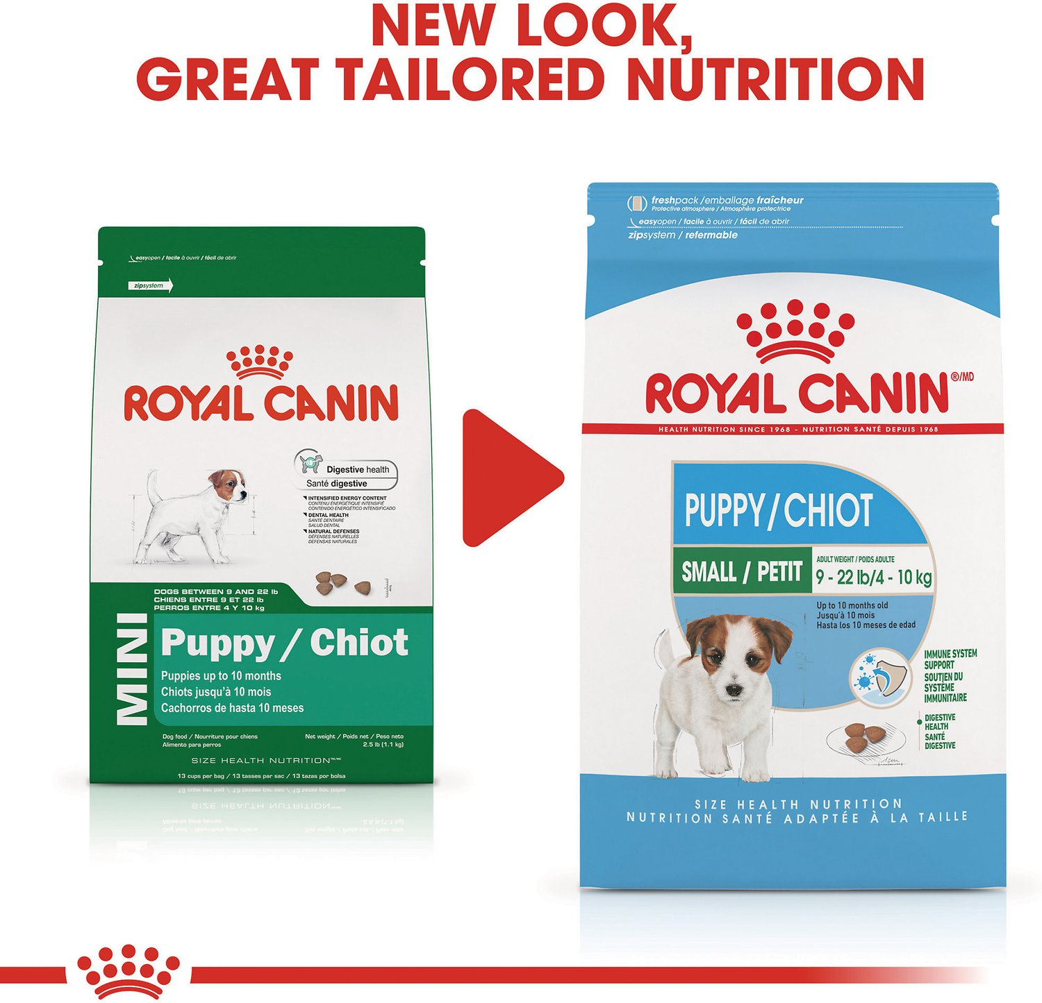 Royal canin mini puppy dry dog food 13 lb bag chewy video geenschuldenfo Gallery