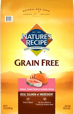 8. Nature's Recipe Grain-Free Salmon, Sweet Potato & Pumpkin Recipe Dry Dog Food